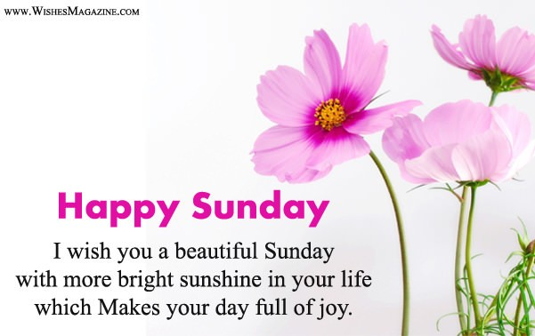 Latest Happy Sunday Wishes Messages Wishes Magazine