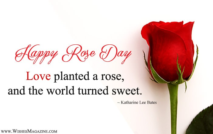 Happy Rose Day Quote Sayings